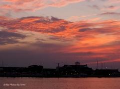 """Chesapeake Bay Blue Crab"" Cloud"