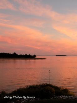 Great Blue Heron at sunset - 9/20/12
