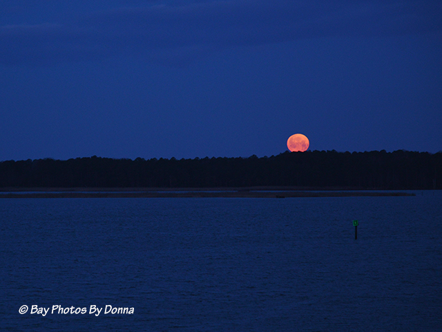 Moon setting before sunrise 3/27/13 @ 5:41 a.m.