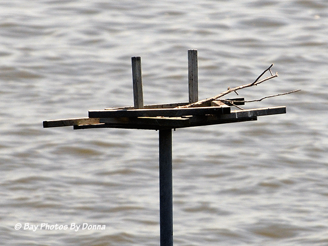 The Osprey left the stick.