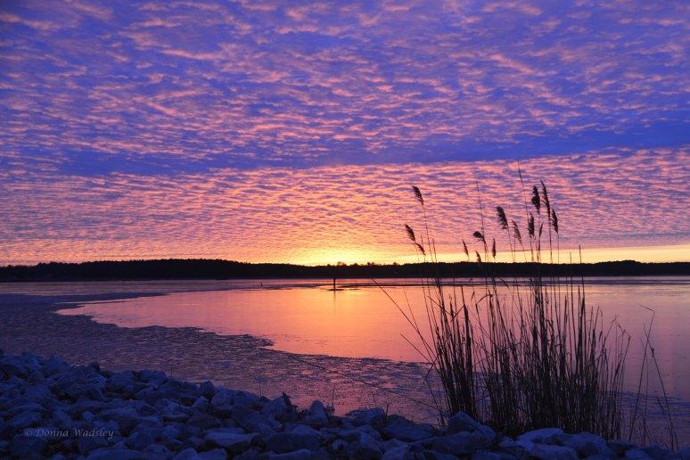 Sunrise over Marshy Creek - February 7, 2015 @ 7:00 am