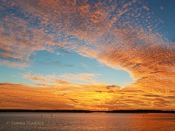 """First Place AND Grand Champion Best in Show - Sky Watching Color """"Sunset Over Kent Island"""""""