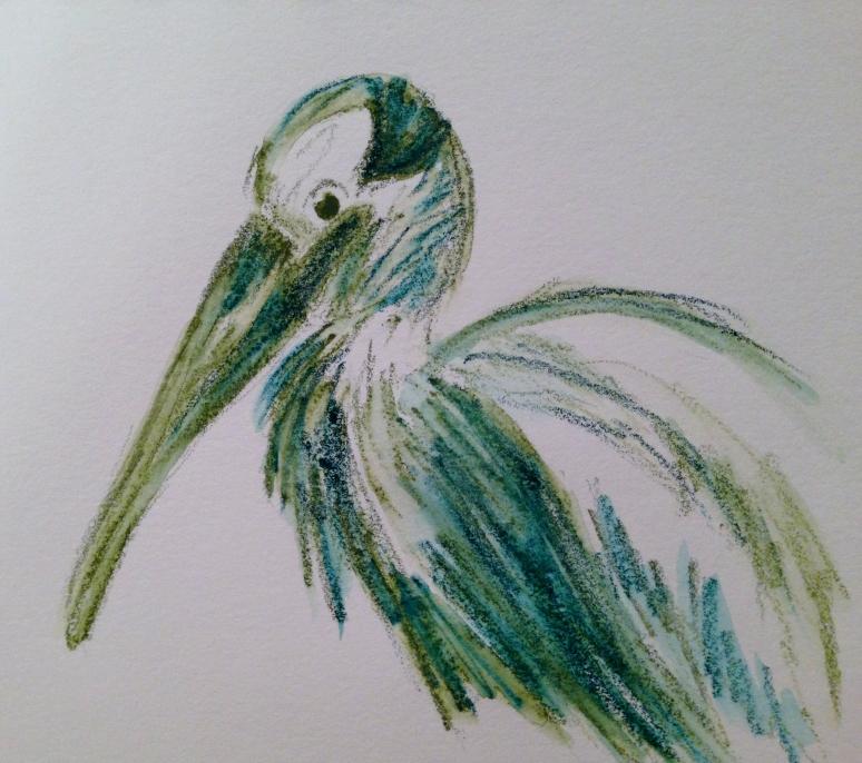 030816 wood stork