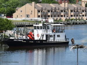 """Maryland DNR's """"John C. Widener"""" stationed in Annapolis"""