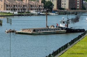 """Maryland DNR's """"Big Lou"""" stationed on Cambridge Creek"""