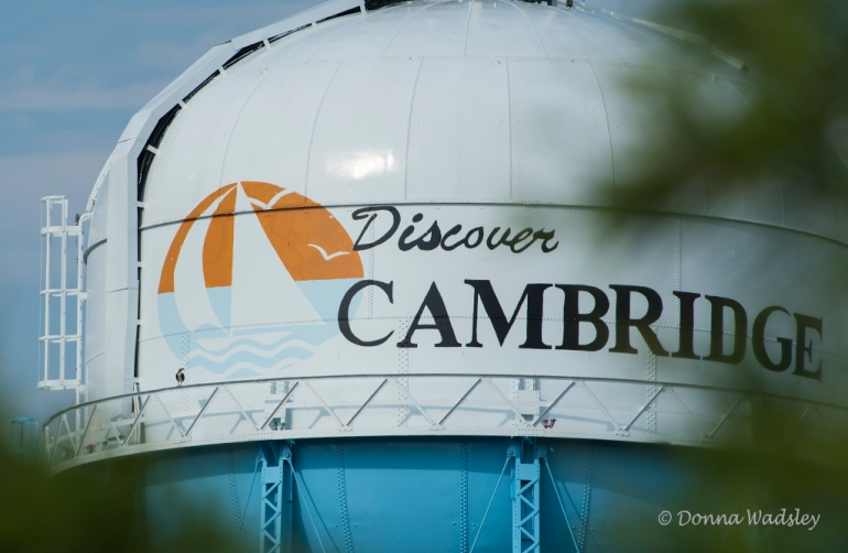 Beau on Cambridge water tower. Looks like a great shot for a commercial!