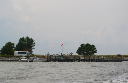 The arrival/departure dock on Poplar Island. The bus is our birding chariot!