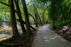 Biking trail along St Mary's River