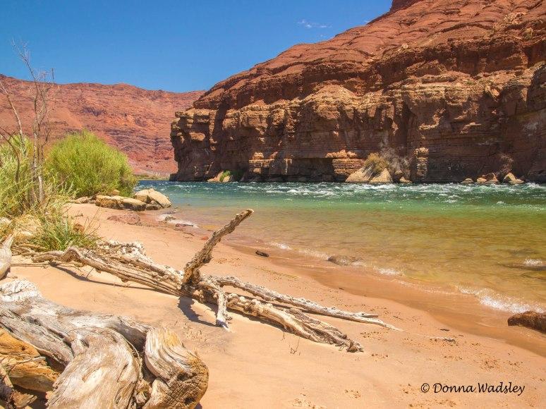 DSC_9852-4 71616 Marble Canyon Colorado River