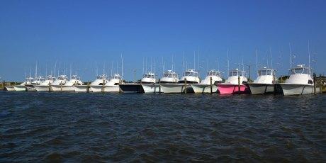 Half of the charter boats at the marina