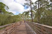 Gulf State Park paths